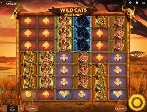 Dagliga jackpottspelet Wild Cats Multiline!