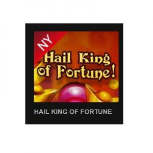 Färska slotsspelet Hail King of Fortune!